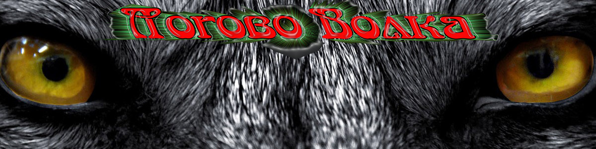 """Студия Звукозаписи в Смоленске """"Логово Волка"""" ( LOGOVO )"""